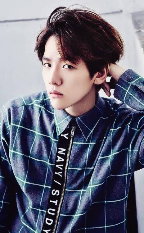 Baekhyun Bio Age Height Weight Net Worth Facts And